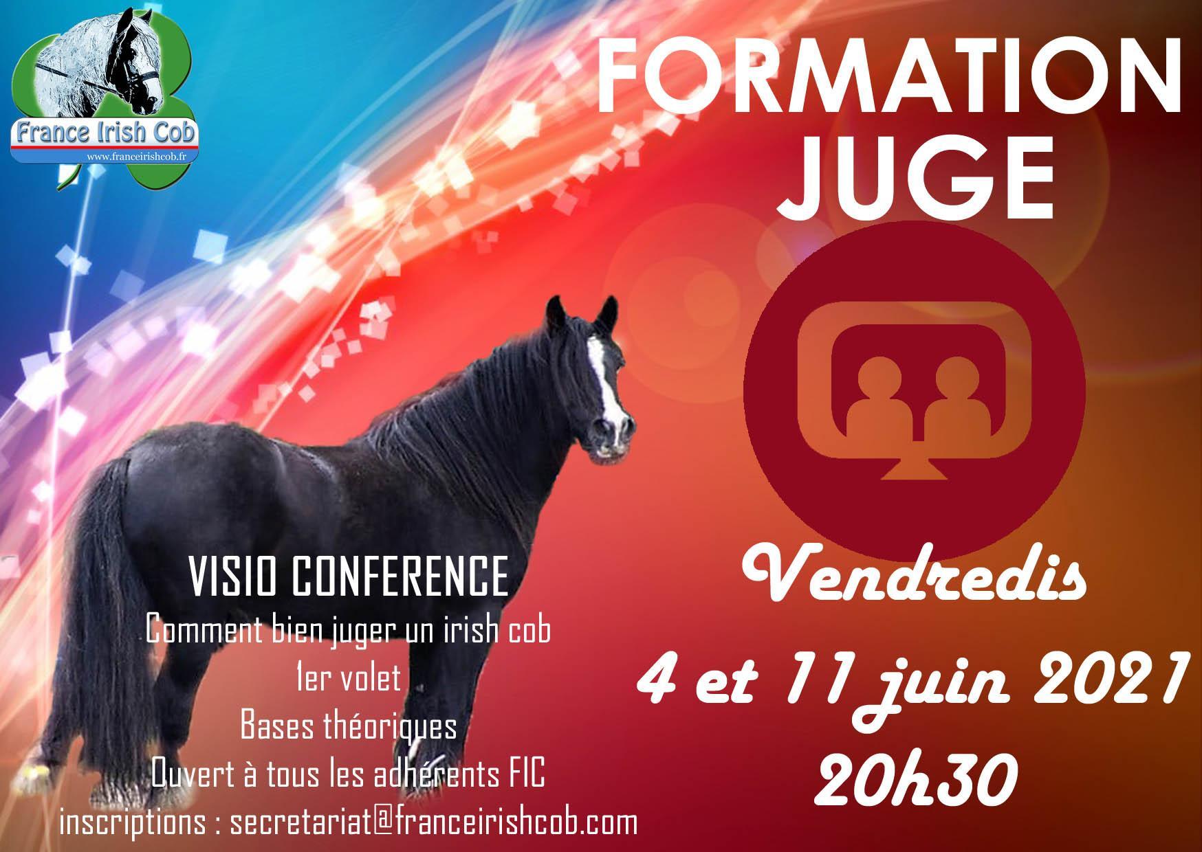 Affiche visio juge